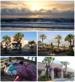 Images from top, left to right: Sunrise at the beach, City Hall, Beaches Town Center, Jaguar statue in the Beaches Town Center, Duncan U. Fletcher High School
