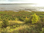 New Ferry, Wirral - DSC03050.JPG