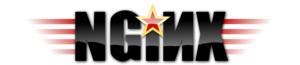 English: Nginx Logo Español: Logo de Nginx