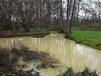 Nieuil-L'Espoir, crue du Miosson.jpg
