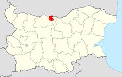 Nikopol Municipality within Bulgaria and Pleven Province.