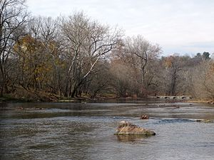 Shenandoah River - View of the North Fork Shenandoah River near Woodstock, Virginia.
