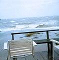 Nov 1985 storm, front yard (9459994080).jpg