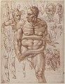 Nude Demon Encircled by a Serpent, after Michelangelo's Last Judgment; and Other Figure Studies (recto); Figure Studies (verso) MET 61.179.2 RECTO.jpg