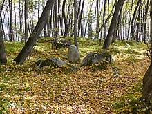 https://upload.wikimedia.org/wikipedia/commons/thumb/a/a1/OV9.jpg/220px-OV9.jpg
