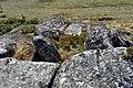 O Moura 3 - panoramio.jpg