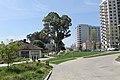 Oakland - panoramio (2).jpg