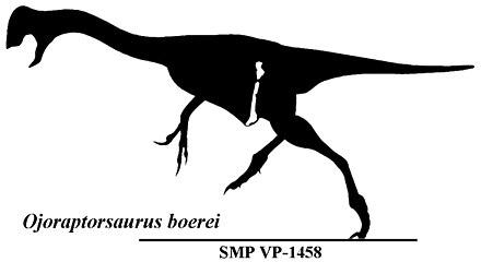 Ojoraptorsaurus