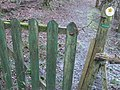 Old gate in the woods - geograph.org.uk - 692915.jpg