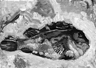 A Lumpfish
