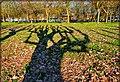 Ombre al Parco di Venaria Reale - panoramio.jpg