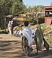 On the road from Bahir Dar, Ethiopia.jpg