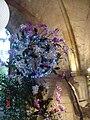 Orchidées à l'Abbaye de Vaucelles 1.jpg