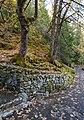 Oregon Caves HD OR1.jpg