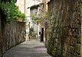 Orvieto wisteria walls cobble street.jpg