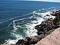 Otter Cliff (Mt. Desert Island, Maine, USA).jpg