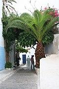 Oudaia (335665600).jpg