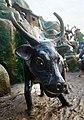 Ox's cheeky grin, Haw Par Villa (14607361208).jpg