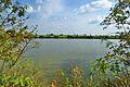 Přírodní památka Nebeský rybník, okres Prostějov (02).jpg