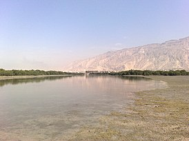 PERSIAN GULF, Mangrove jungle in Asalouyeh جنگل حرا ، بندر عسلویه - panoramio.jpg