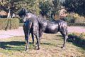 Paarden (Ballum).jpg