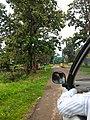 Panna, Madhya Pradesh 485661, India - panoramio (1).jpg