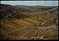 Panorama shilo 03.jpg
