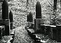Paolo Monti - Servizio fotografico (Gardone Riviera, 1969) - BEIC 6353940.jpg
