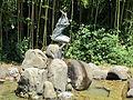 Parco di pinocchio 23 la capretta.JPG