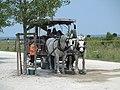 Parking of Mont Saint-Michel (2).jpg