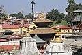 Pashupatinath Temple 2017 119.jpg