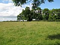 Pastures near Click 'em in Farm - geograph.org.uk - 572377.jpg