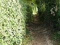 Path near Lowdham - geograph.org.uk - 1098280.jpg