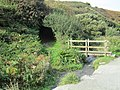 Path to Tintagel Castle, Cornwall (461190) (9458722300).jpg