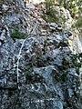 Path to the top of Verdon Canyon - panoramio.jpg