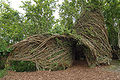 Patrick Dougherty June 14 2008 entrance.jpg