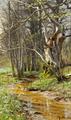 Peder Mønsted - Tidlig forårsdag i skoven, Sorøegnen - 1903.png