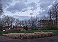 Pennisetum planted in Parc Seny (Auderghem, Belgium, DSCF2718).jpg