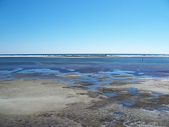 Big Lagoon State Park - Image: Pensacola FL Big Lagoon SP from obs tower 04