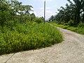 Peserai, 83000, Johor, Malaysia - panoramio (7).jpg