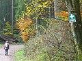Pfad nach Scholtesdell - geo.hlipp.de - 15154.jpg