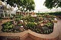 Phipps Conservatory 20.jpg