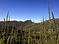 Pico das Prateleiras, na parte alta do Parque Nacional do Itatiaia.jpg