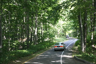 Pierce Stocking Scenic Drive - Wooded section