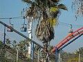 PikiWiki Israel 8061 Superland in Rishon-Lezion.jpg