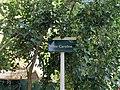 Plaque Allée Caroline - Noisy-le-Grand (FR93) - 2021-04-24 - 2.jpg