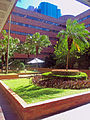 Plaza with palm trees at Hong Kong Polytechnic University.jpg