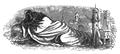 Podróże Gulliwera tom I page0178.png