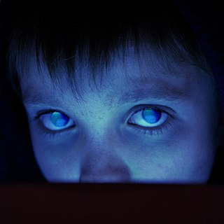 <i>Fear of a Blank Planet</i> 2007 studio album by Porcupine Tree