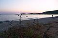 Porto Pollo, Corsica (32087688442).jpg